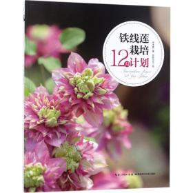 铁线莲栽培12月计划