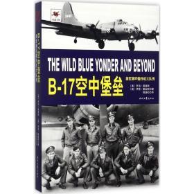 B-17空中堡垒:美军第95轰炸机大队传