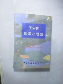 王安林短篇小说集(台州市作家协会副主席王安林作品)