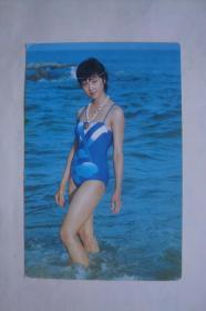 明信片   电影明星   泳装照   朱琳