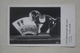 老照片   创汇出口商品展示    一九七八年上海实用美术展览   古瓷