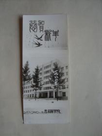 老照片   照片式贺卡  吉林林学院   恭贺新年  1984