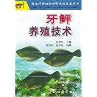 比目鱼养殖技术书籍 大菱鲆养殖技术