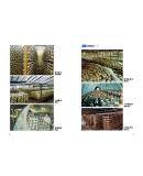香菇种植技术书籍 香菇绿色高优栽培新技术