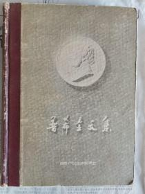 普希金文集(精装)