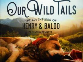 英文原版      Our Wild Tails: The Adventures of Henry and Baloo           我们的野尾巴:亨利和巴鲁历险记