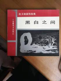 黑白之间赵玉敏装饰画集