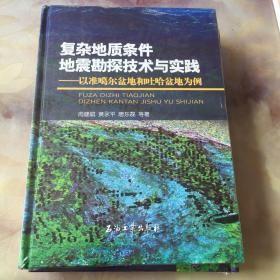 复杂地质条件地震勘探技术与实践