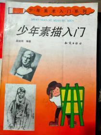 少年美术入门系列 《少年素描入门》