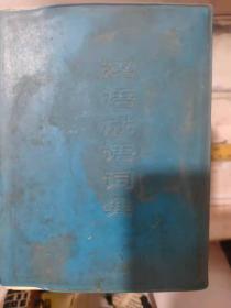 《 汉语成语词典》