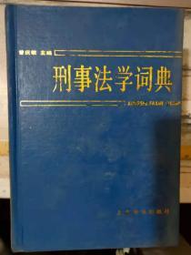 《刑事法学词典》