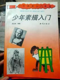 少年美术入门系列《少年素描入门》