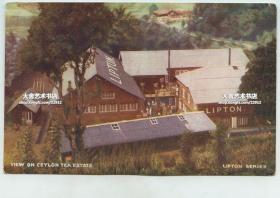 清末民国早期锡兰的立顿茶园明信片-----锡兰立顿茶厂的车间厂房俯瞰