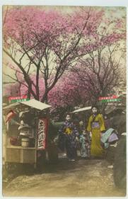 清末日本樱花树盛开,树下有服花季少女和小食品摊贩,上色老照片一张,尺寸14.5X9.5厘米。