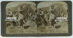 清末民国时期立体照片----1905年中国东北满洲日俄战争时期,驻辽宁铁岭的日军在战壕中呈战斗队形,准备伏击俄军的骑兵队