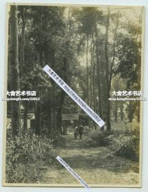 民国江苏苏州天平山