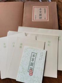 《本草图谱》复刻二十图 日本古典药学与博物画 春阳堂创业100周年纪念出版 8开16开微喷