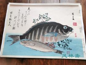 歌川广重《鱼选集-紫苏 金目鲷》悠悠洞复刻 日本浮世绘中的博物画