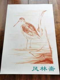 日本创作版画21 水鸟素描 对开大尺幅 限定45