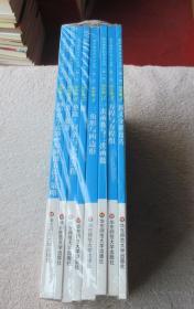 数学奥林匹克小丛书(第二版)初中卷:1因式分解技巧,2方程与方程组,3一次函数与二次函数,4三角形与四边形,5圆,6整除、同余与不定式,7组合趣题,8初中数学竞赛中的解题方法与策略(全8本合售)
