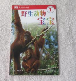 儿童目击者:开始阅读1(第1级)(2-5岁):野生动物宝宝