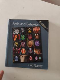 【外文原版】  Brain and Behavior 大脑与行为