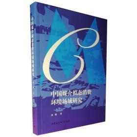 中国媒介拟态消费环境场域研究 经济理论、法规 周娟