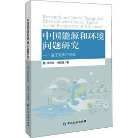 中国能源和环境问题研究——基于效率的视角