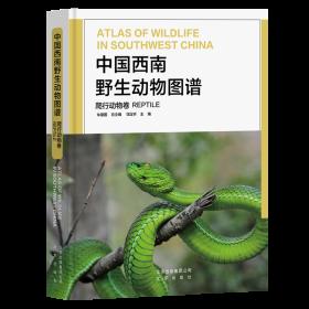 中国西南野生动物图谱(爬行动物卷)(精)