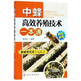 中蜂高效养殖技术一本通