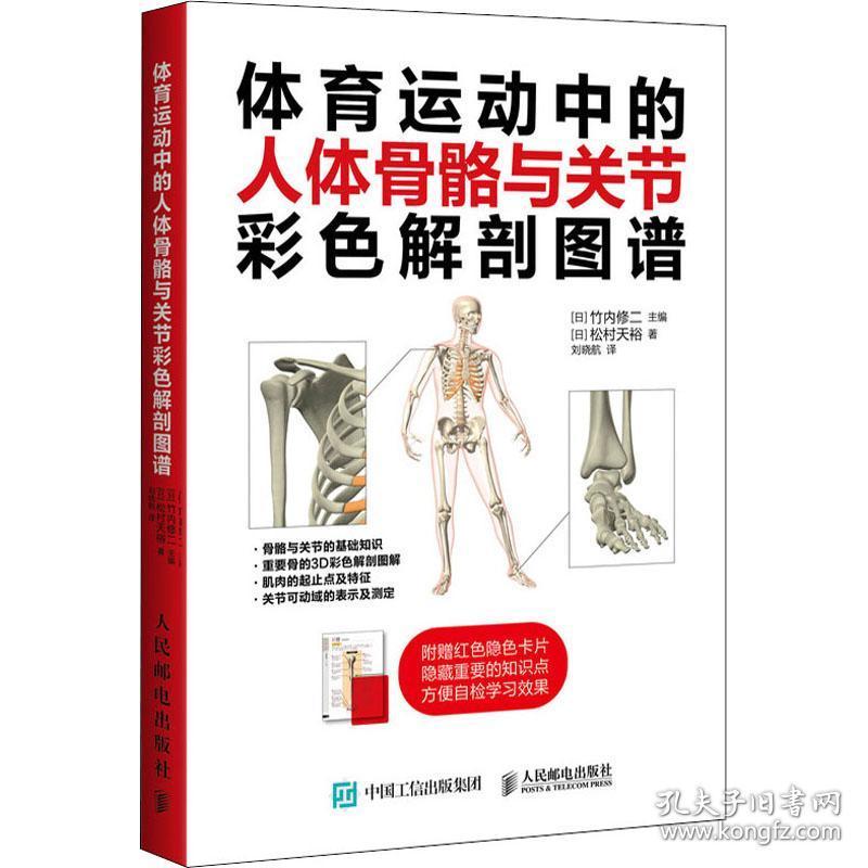 体育运动中的人体骨骼与关节彩色解剖图谱