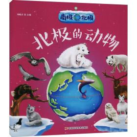 南极北极北极的动物