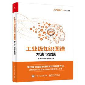 工业级知识图谱:方法与实践(全彩)(博文视点出品)