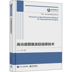 国之重器出版工程 高光谱图像波段选择技术