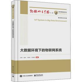 国之重器出版工程 大数据环境下的物联网系统