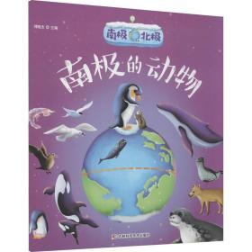 南极北极南极的动物