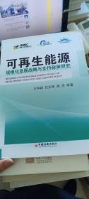 可再生能源规模化发展战略与支持政策研究
