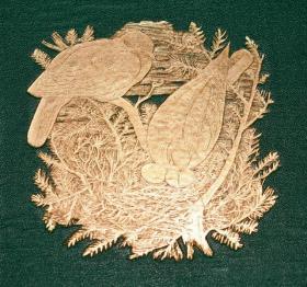 1866年 J.G. WOOD_ HOMES WITHOUT HANDS 《动物巢穴图考》珍贵初版本 金碧辉煌精装大开本 G.Pearson大量精美雕版版画插图 品相佳