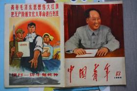 中国青年1966年13