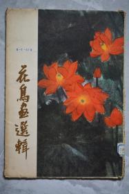 花鸟画选辑【全套12张】