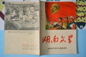 湖南文学1966年6