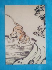 虎(明信片)
