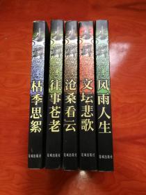 李辉文集 一套五卷五册全