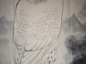 梁秋蝉   绘《雄鹰图》     68×65厘米