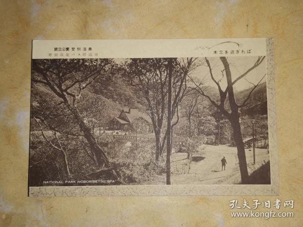 明治大正时期 单色版明信片: 国立公园 登别温泉