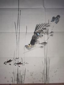 """""""河北八家""""之胡嘉梁  绘 鳜鱼图  一幅      49×49厘米"""
