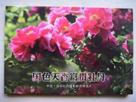 国色天香富贵牡丹明信片