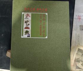 景外之景-象外之象-岭南盆景名家