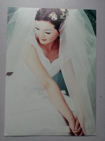 彩色照片:婚纱美女(12*18cm)