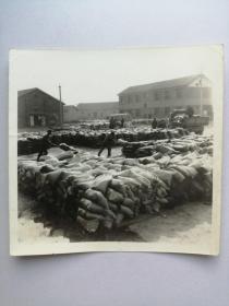 老照片:粮食堆满场